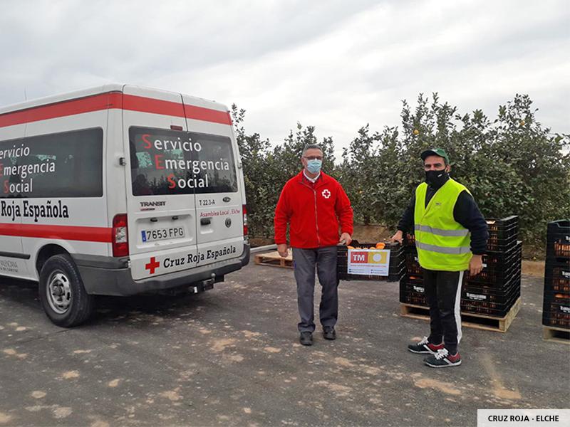 Cruz Roja Elche